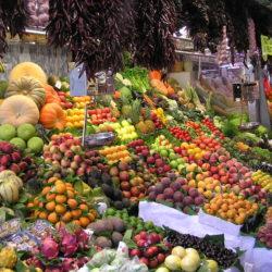 Alimentazione naturale e Diete